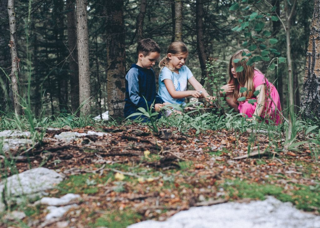 Kids sitting outdoors building a bug home together.