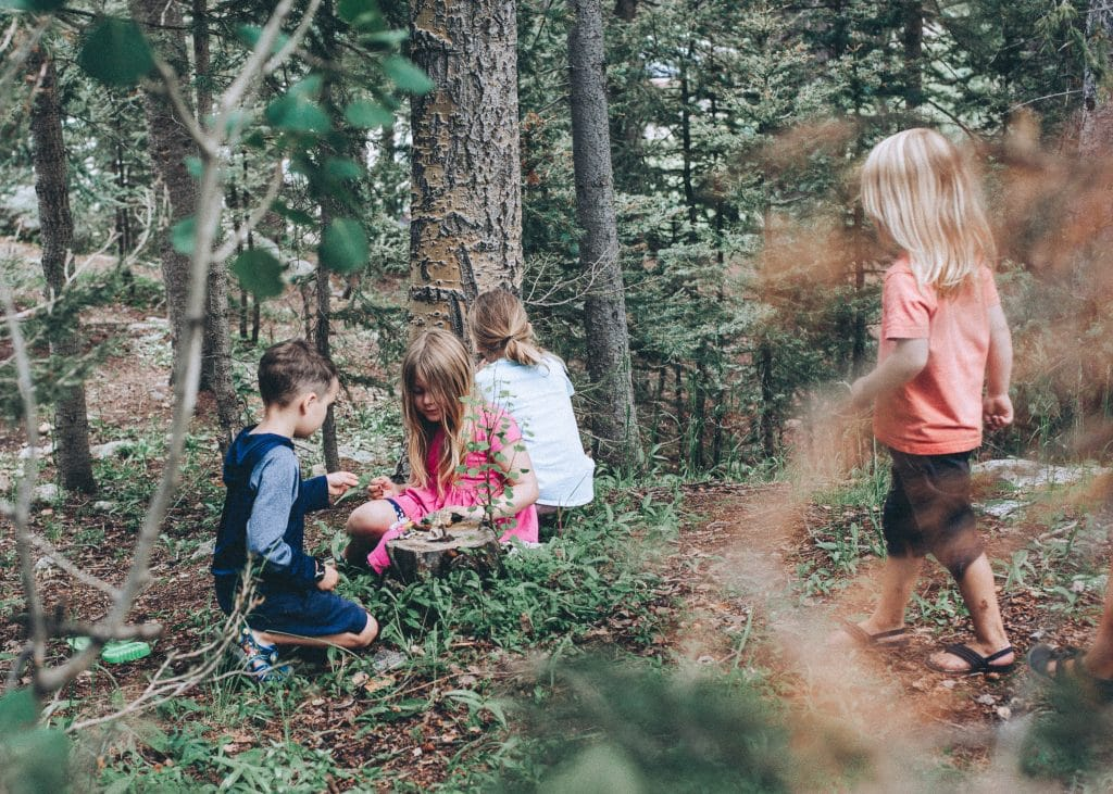 Kids building a bug home together in the forest.