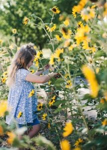 Child in a field of sunflowers.