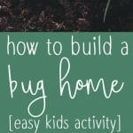 Pinterest collage pin for building a bug home activity