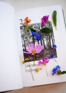 Pressing flowers between the pages of a book.