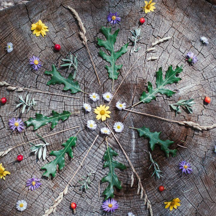 Creating a Nature Mandala