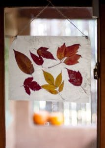 Autumn Stained Glass hanging in a window.