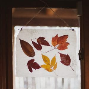 Autumn Stained Glass hangin in a window.