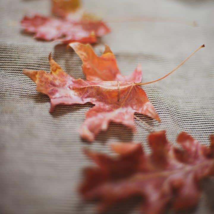 How to Make Fall Leaf Garland