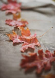 Wax-dipped fall leaves make a pretty garland.
