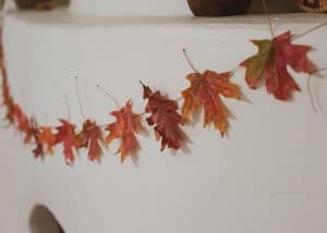 Close up of fall leaf garland.