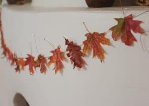 Close up of fall leaf garland.