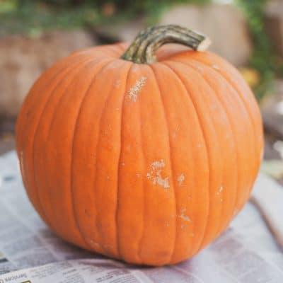 Erupting Pumpkin Activity