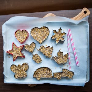 Child birdseed cookies in the refrigerator for 12 hours.