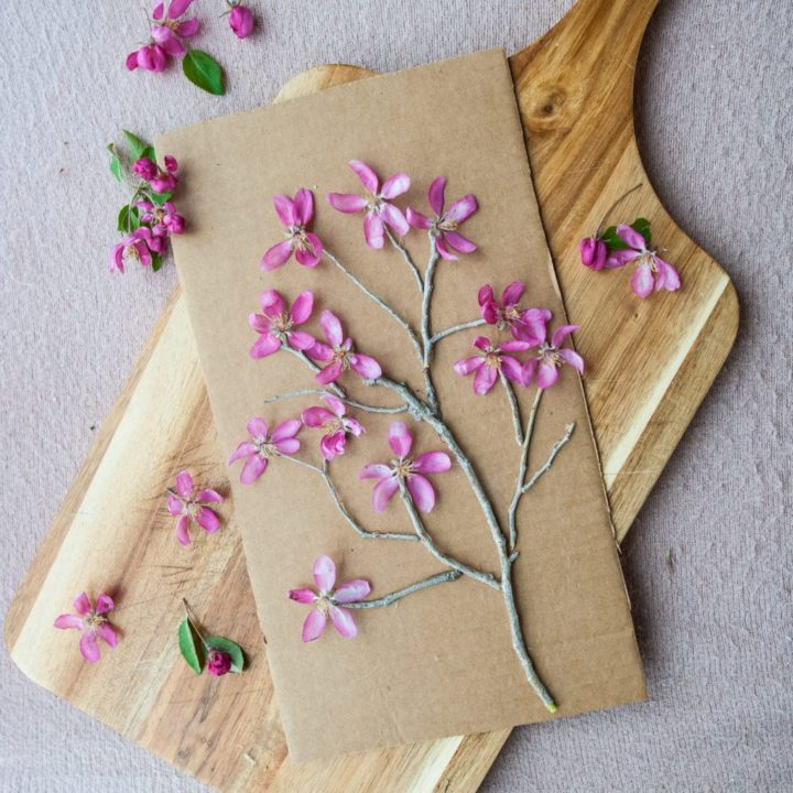 How to Make Blooming Twig Trees