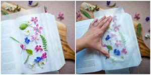 Pressing flowers to make Nature Bookmarks.