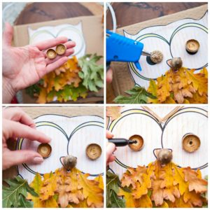 Create eyes for the owl with acorn caps.