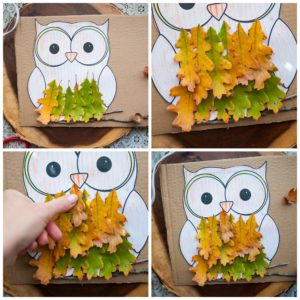 Create feathers for the owl with oak leaves.