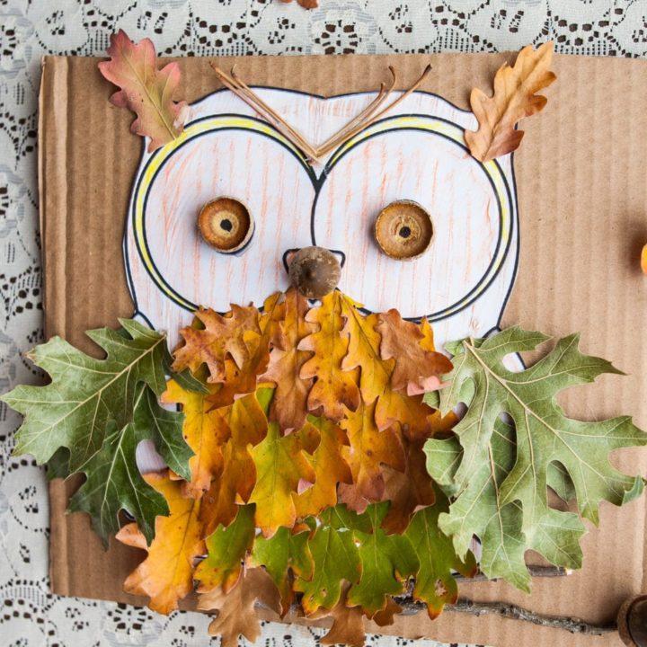 How to Make Oak Owls