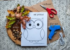 Supplies and materials required to make oak owls.