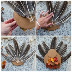 Tail feathers for the nature turkey.