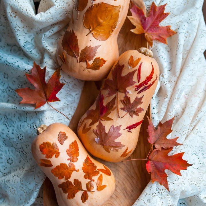 How to Make Fall Leaf Squashes