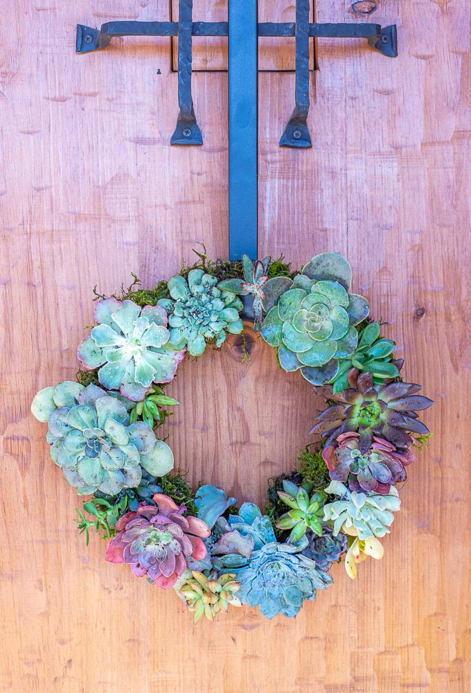 succulent wreath hanging on a door