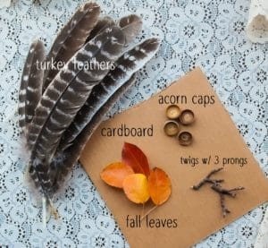 Materials needed for Nature Turkeys.