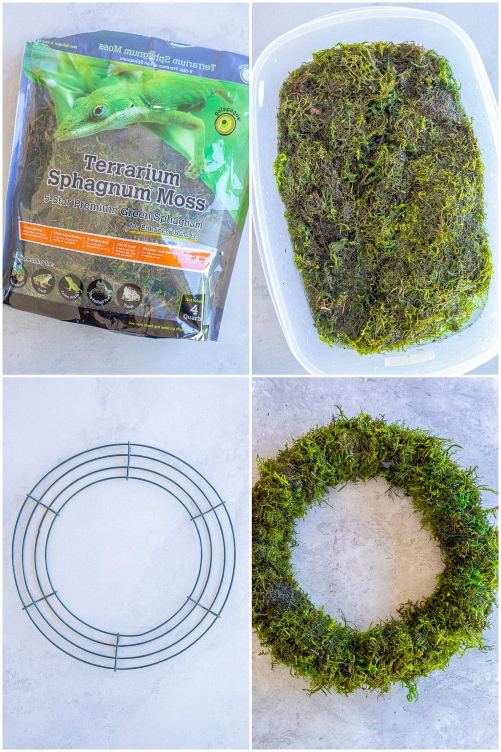 showing the supplies you need for how to make a succulent wreath